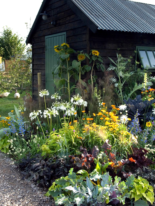 Allotment garden inspiration | Hello Victoria